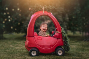 tree farm, mini, event, photo, shoot, photographer, photography, phoenix, az, arizona, surprise, goodyear, litchfield park, avondale, glendale, scottsdale, mesa, peoria, glendale, christmas, photos, portraits
